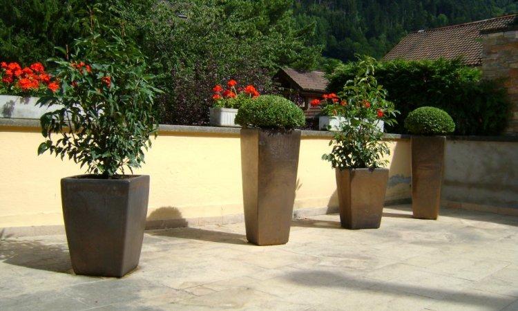 plantation en pots