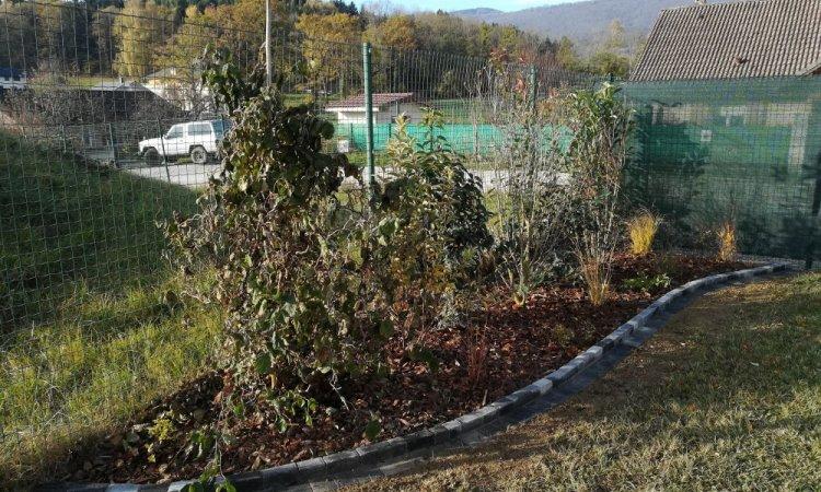 plantation massif arbustif avec séparation pavé
